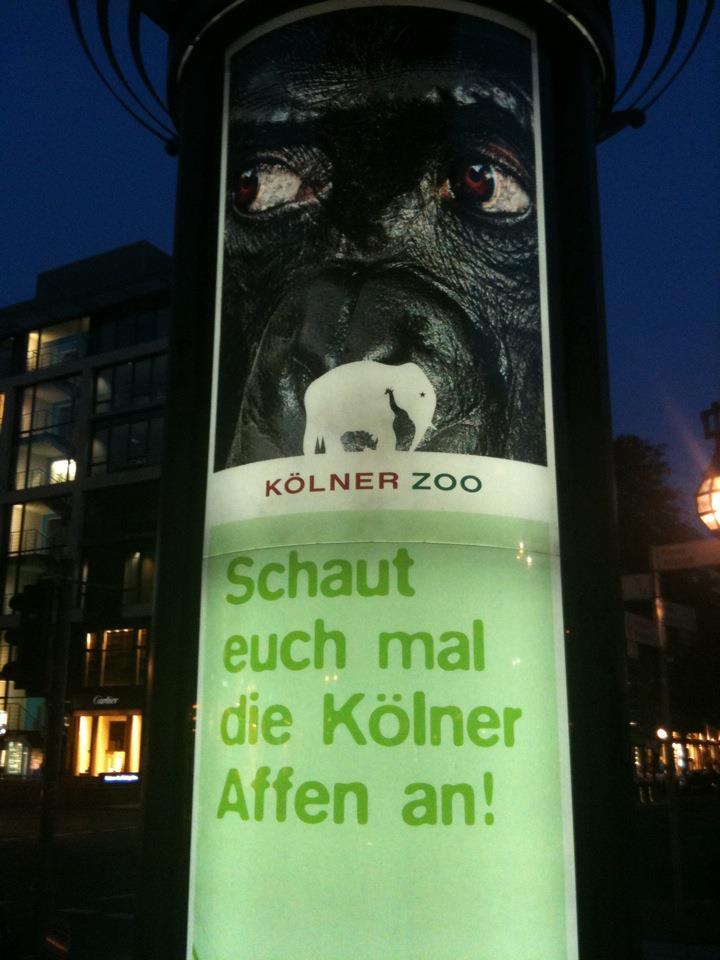 Werbung für Kölner Zoo in Düsseldorf