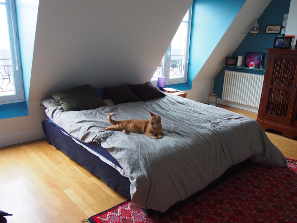 Zimmer Airbnb Frankreich Paris Erfahrungen mit Katze